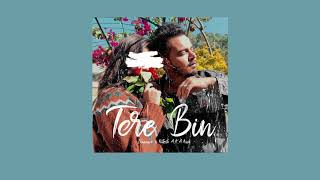 Tere Bin (Audio) | Nitesh A.K.A Nick x iKaanwe | New Hindi Song