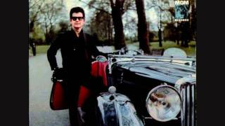 Watch Roy Orbison City Life video