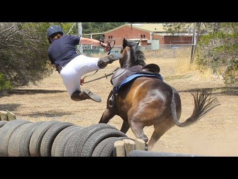 Horse Falls Compilation - Epic Equestrian Falls and Fails - Best Bad Horse Riding and Pony Fails