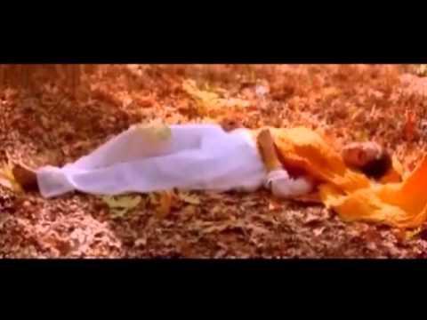 Pranayavarnangal is listed (or ranked) 8 on the list The Best Biju Menon Movies