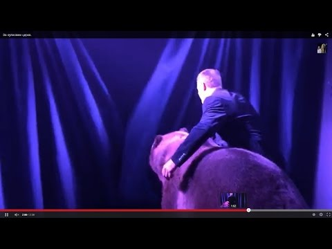 Сексуальные в цирке 18 фотография