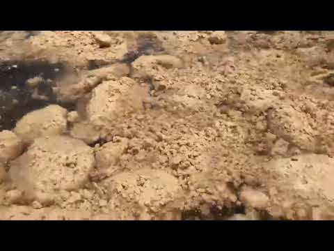 Video CPO tumpah di Teluk Bayur Padang (Anonim)