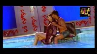 Veena Mallik Hot song from dirtypicture kannada silk