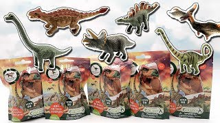 6 Dinosaur 3D AR! Dinosaur Walking And Real Sounds - Fun Dino Video For Kids
