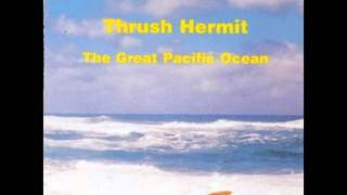 Watch Thrush Hermit The Great Pacific Ocean video