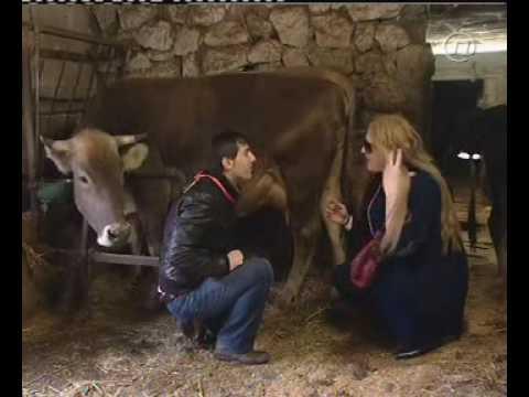 Bijele udovice Ante i Simonica na farmi