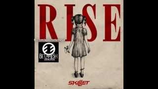 Watch Skillet Hard To Find video
