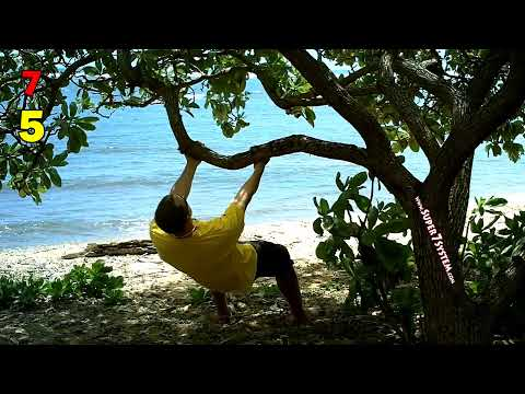 BEACH WORKOUT in Kauai: Back, Biceps, and Rear Delts with NO EQUIPMENT