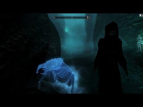 Skyrim Mod Review: Enhanced Familiars
