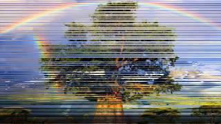 Hình ảnh cầu vồng tuyệt -Rainbow