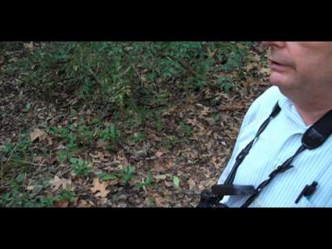 Coates Bluff Nature Trail, Shreveport / Larry Raymond, conservationist