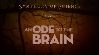 9- Symphony of Science - Ode to the Brain (Subtítulos en español)