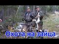 Охота на зайца mp3