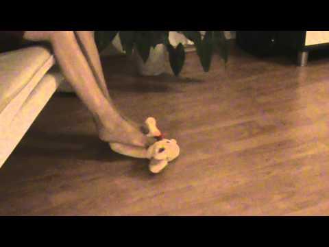 Nude Girls Slaughter Porno Videos  Pornhubcom