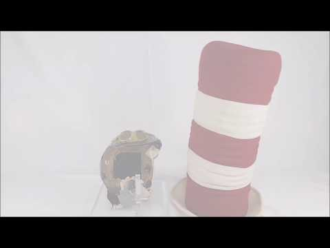 The Cat In The Hat (Mike Myers) Remote Control Movie Prop Hat