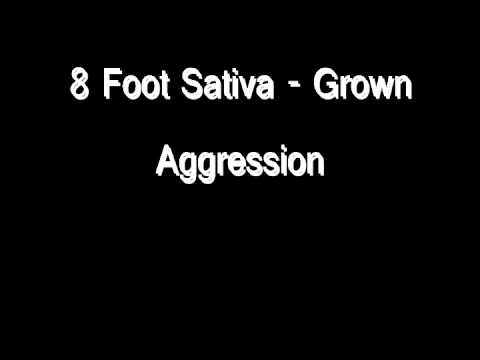 8 Foot Sativa - Grown Aggression