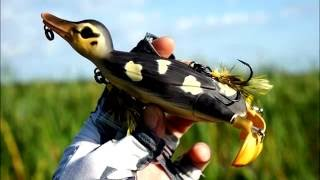 Savage Gear Suicide Duck - IQ-Files Lures Teaser Trailer