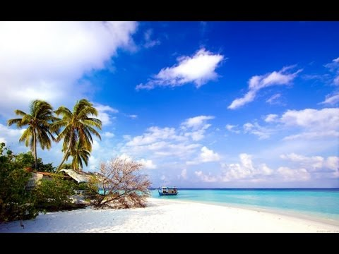 Sarasota Florida Homes for Sale - Sarasota Beaches and Resorts
