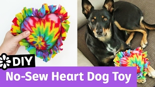 DIY No-Sew Heart Dog Toy | It's All Love Collab | Sea Lemon