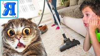 КОШКИ или ПЫЛЕСОС? Сколько кошек у соседки Ясина? Котята, Кошки и Пылесос для детей / Я Ясин