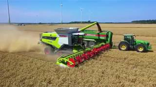 Harvest 2019 in Latvia - Lexion 8800 & 770