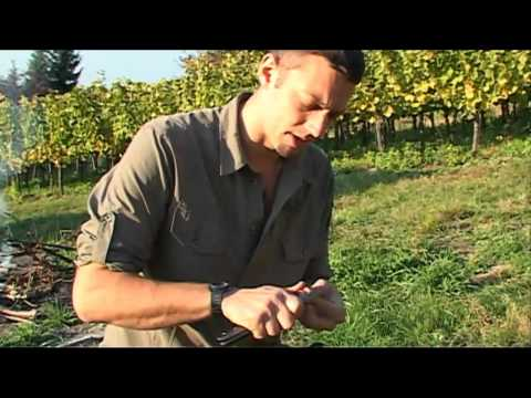 Outdoor-Survival 9: Herbsternte 1