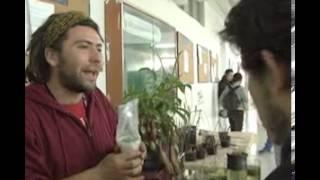 Plantas carnívoras  - Universidad Nacional de Colombia