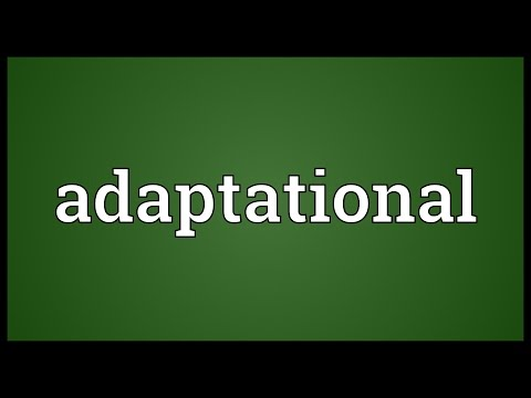 Header of Adaptational