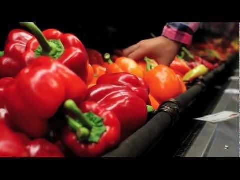 My Garden Footprint Lifestyle – Local Fresh Food Market
