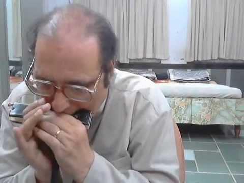 Chandi Jaisa Rang Hai Tera Sone Jaise Baal..harmonica-mouthorgan By Sham Sajal video