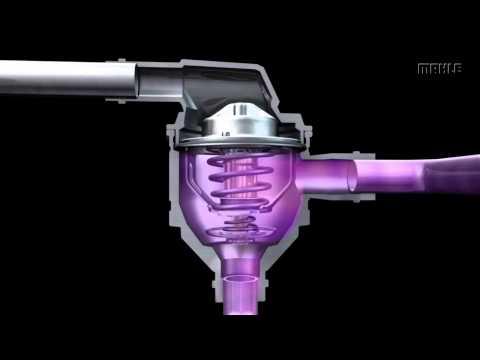 Konstruktion und Funktion von Thermostaten