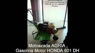 Motoazada Agria Motor Honda