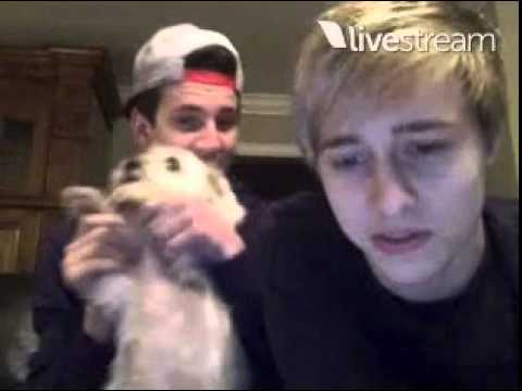 Before You Exit Live Chat September 2014