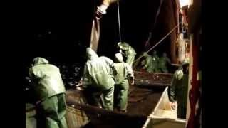 hidrolik tahrikli canlı balık transfer pompası