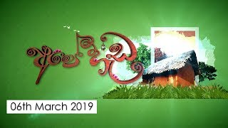 Ape Heda | 06th March 2019