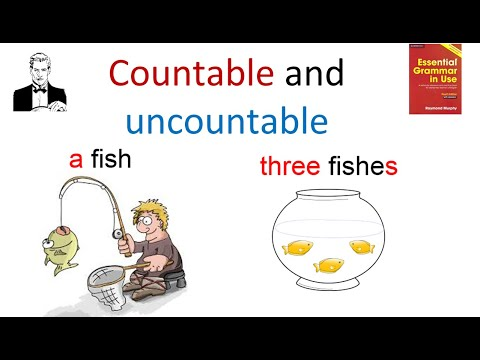 Исчисляемые и неисчисляемые существительные (2)