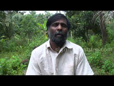 Nattuvaidyam | Cure Liver Cirrhosis, Fatty Liver, Ulcer, Acidity, Stomach pain, Migraine naturally