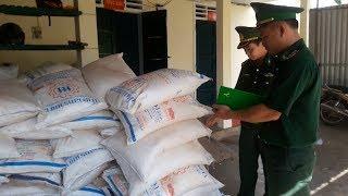 Cận cảnh bắt vụ vận chuyển 4,5 tấn đường nhập lậu
