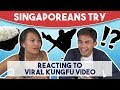 Singaporeans Try: Reacting to Viral Kungfu Fighter