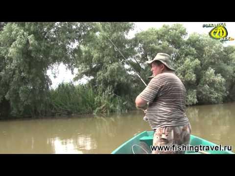 все о рыбалке и снастях на сазана