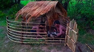 Builder Best Video: Save Wild Pig From Hole and  Building Mini Wild Pig  House ,Wild Boar House
