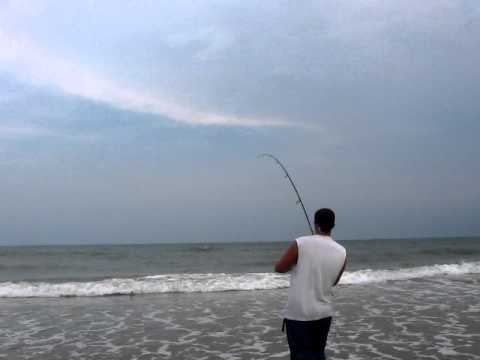 South carolina surf fishing how to save money and do it for South carolina surf fishing