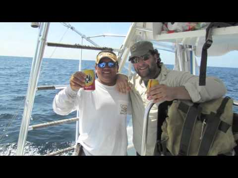 Billfishreport.com Sport fishing Costa Rica