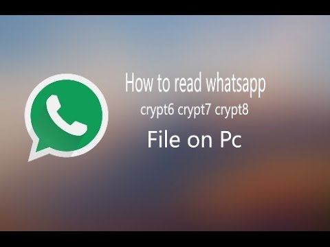 How can recover deleted files from whatsapp
