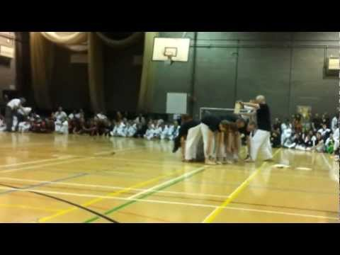 Tang Soo Do - Ireland's Gold Medal Winning Team Demonstration '12 Image 1