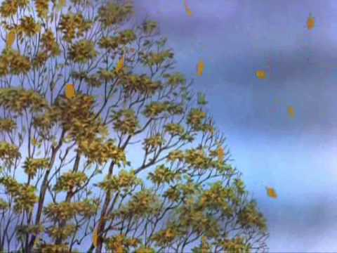 Boards of Canada - Twoism. 6:01. For more videos and playlists like this one