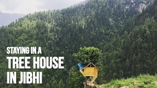 TREE HOUSE IN JIBHI? STAYING IN TANDI | HOW TO REACH JIBHI | UNEXPLORED HIMACHAL PRADESH