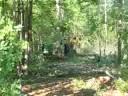 Ashmore Logging Contractors, Lincolnton, Georgia