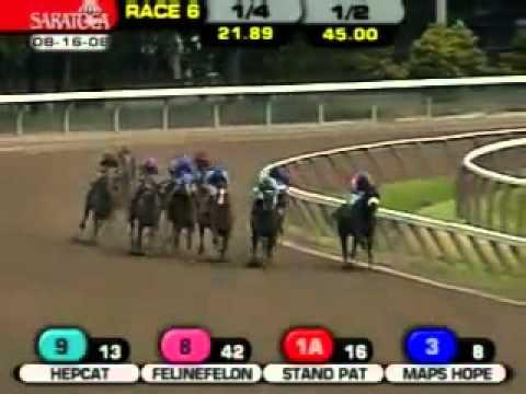 ARRRRR Horse.mp4