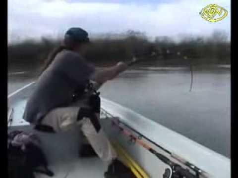 Menangkap Ikan Besar Menangkap Ikan Keli Terbesar